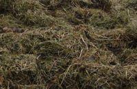 conseils du siveic canton du thillot pour r ussir son compost. Black Bedroom Furniture Sets. Home Design Ideas
